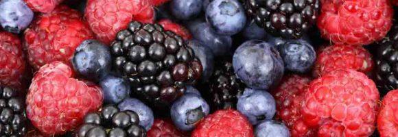 Fruchtwein | Beerenwein