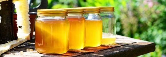 honigwein | honigmet | met